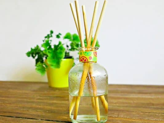 Reed Diffuser Sticks Alternative